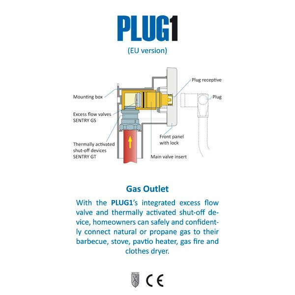 PLUG1 components