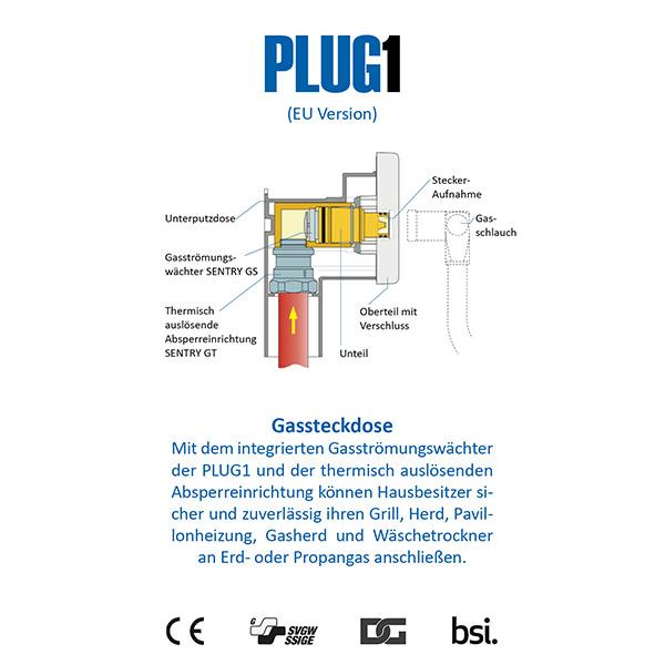 PLUG1 Bestandteile